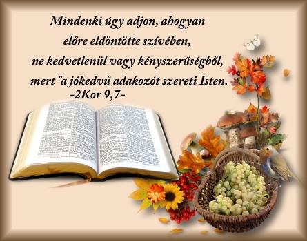 Erdélyi keresztények: Ige a mai napra (kép)   Christian quotes, Quotes, Inspiration