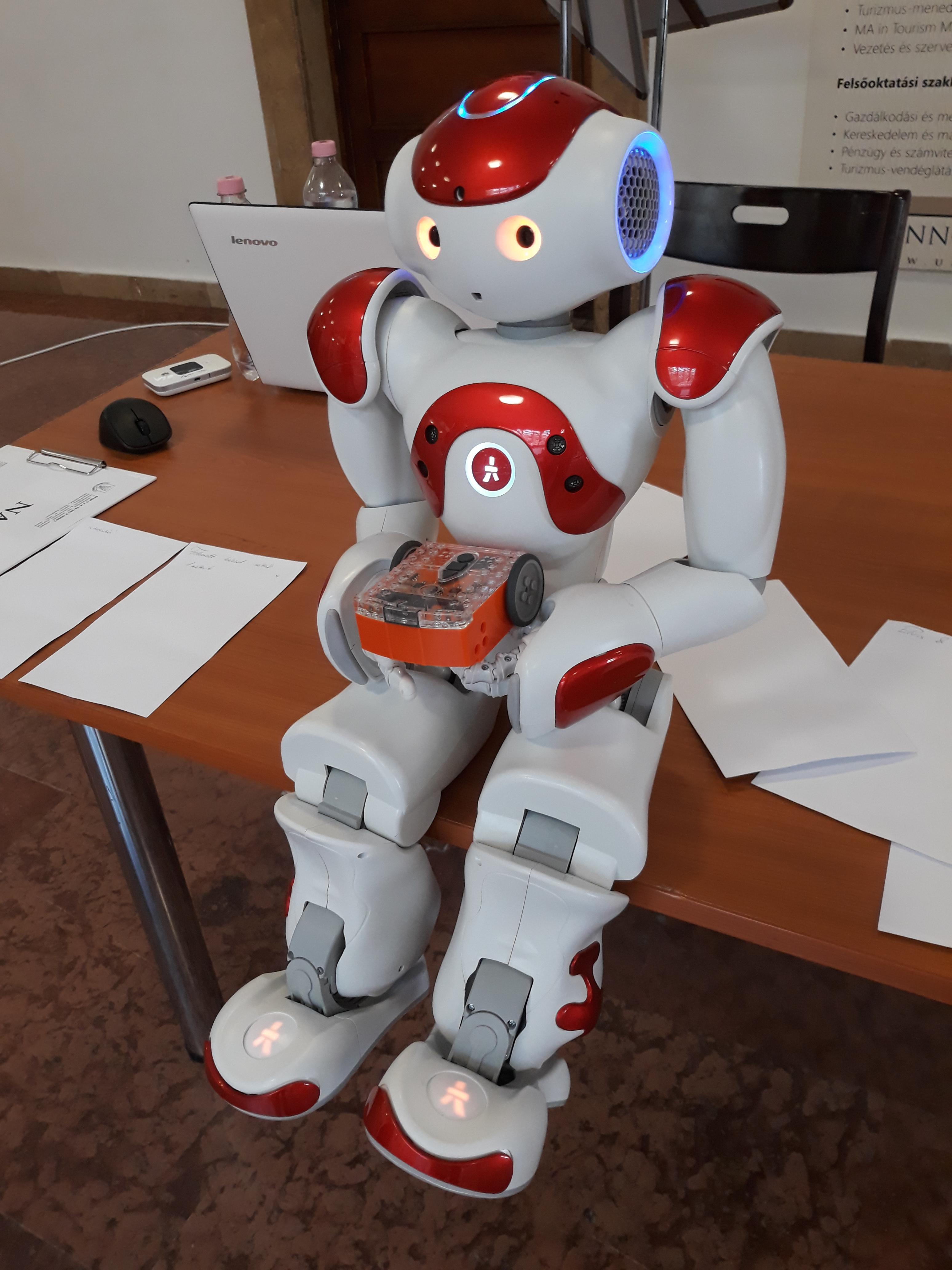 robot ideghálózatok kereskedelme)