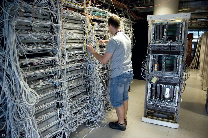 illegális kereset a hálózaton