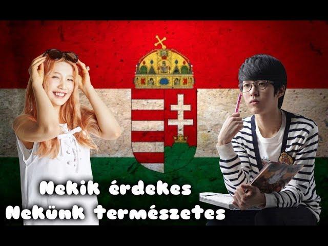A koreaiak pénzt keresnek az élelmiszer-videókból