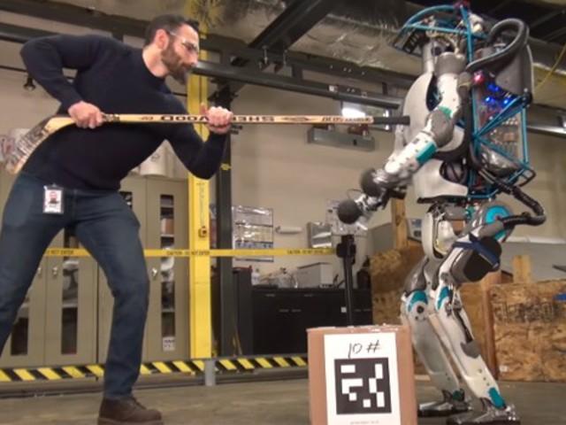 robotok jelzik az opciókat
