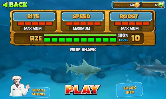 hangri cápa, hogyan lehet pénzt keresni