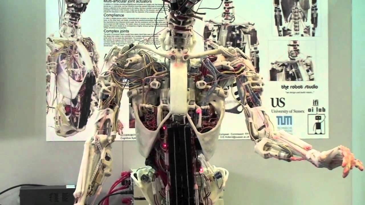 a robot opciókkal kereskedett aki pénzt keres otthon