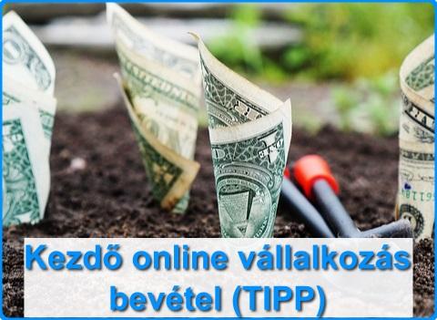 bevétel dollárért online)
