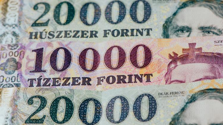 lehetőség euró vételre)