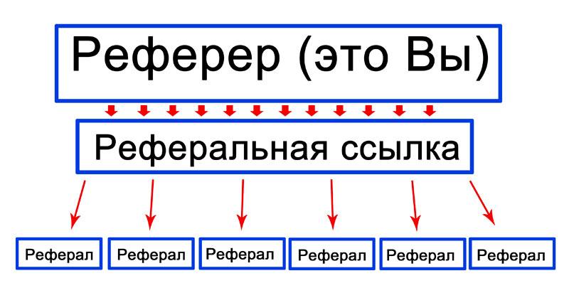 a legtöbb jövedelem a hálózatban)