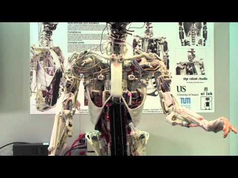 a robot opciókkal kereskedett a pontos stratégia lehetőségei a legjobbak